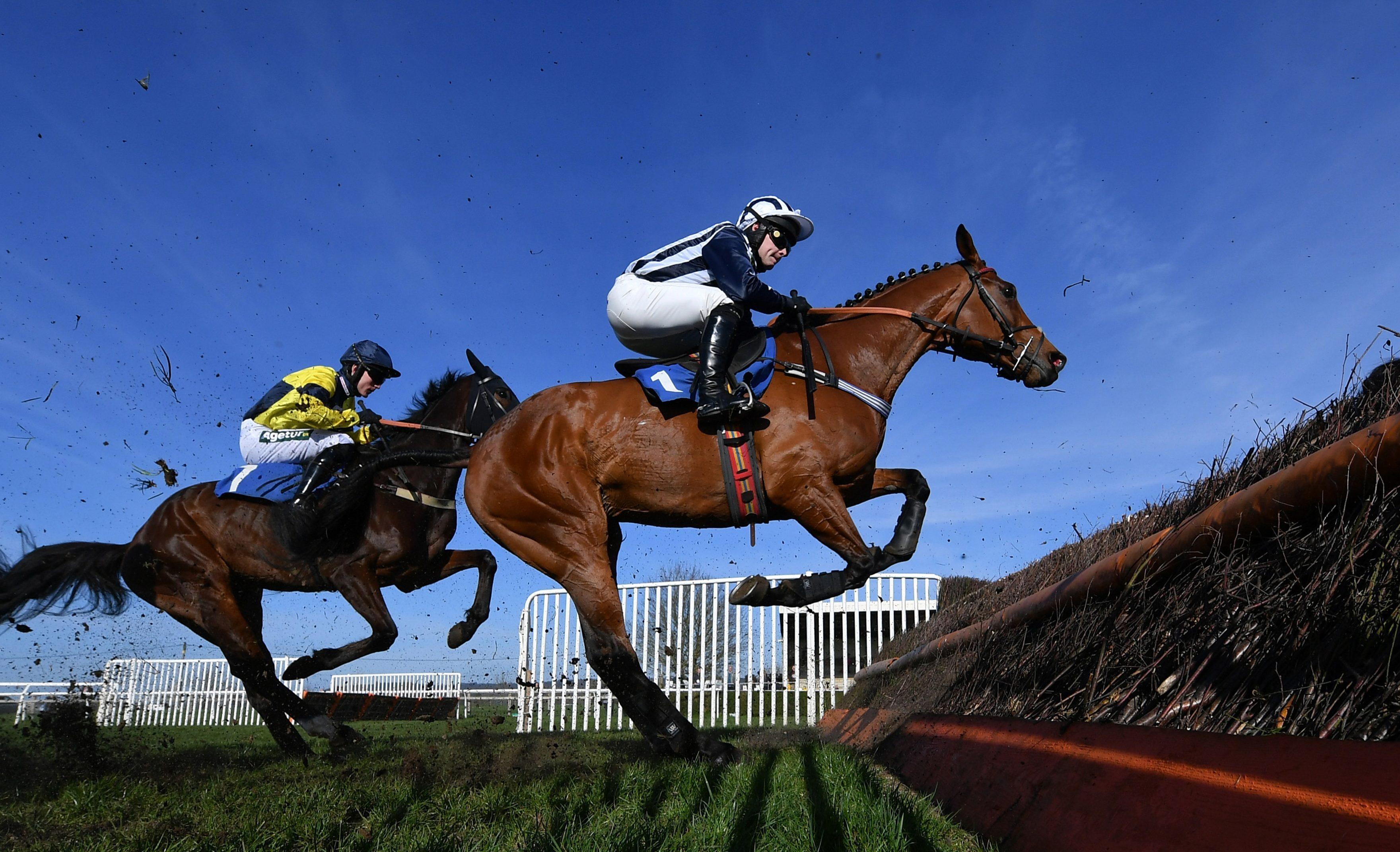 Всё о конном спорте