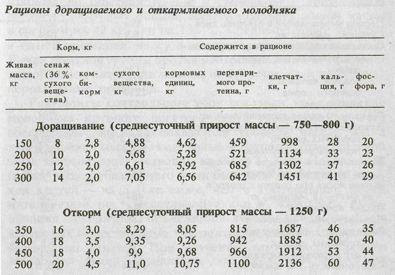 """Кормление крупного рогатого скота: как выбрать правильный рацион ао """"витасоль"""""""