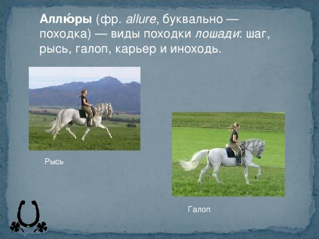 Виды и описание искусственных аллюров лошадей