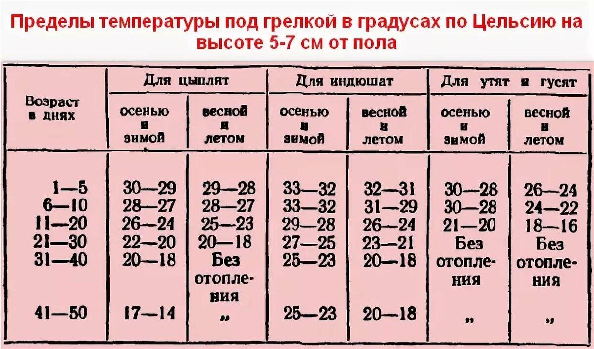 ✅ таблица температурного режима для бройлеров, содержание месячных цыплят - tehnomir32.ru