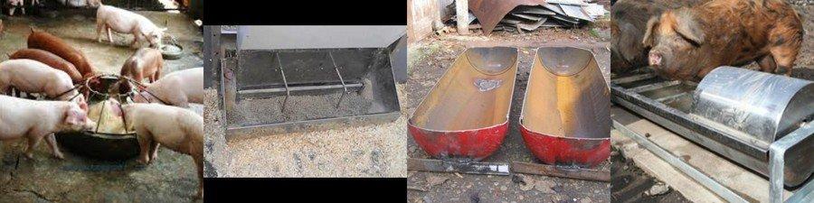 Бункерная кормушка для свиней: как выбрать и сделать своими руками?