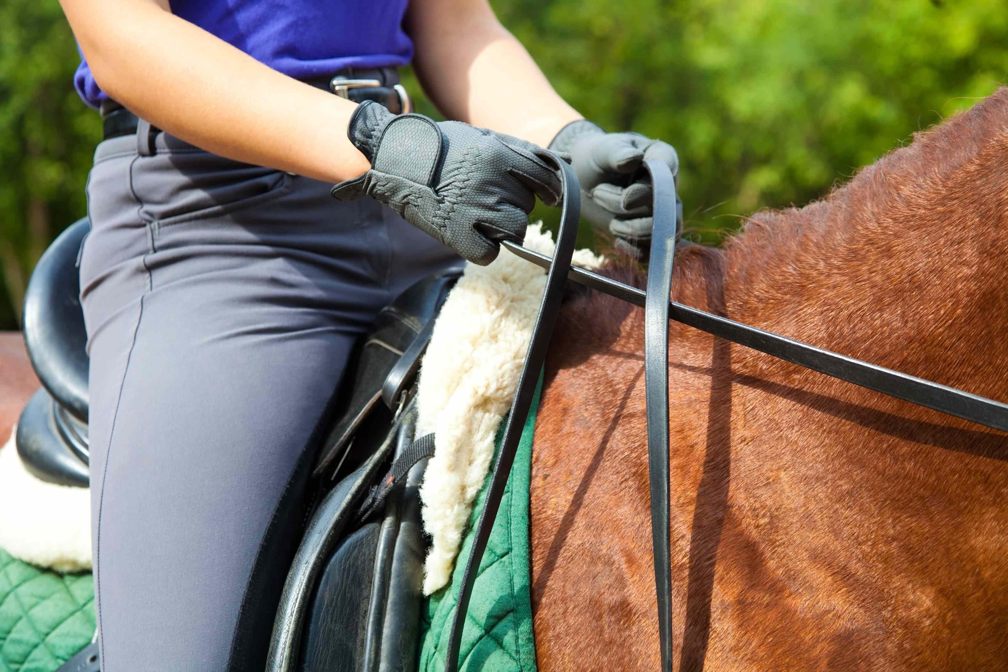 Как научиться правильно седлать лошадь и ездить верхом?