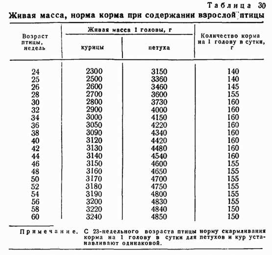 Вес бройлеров по дням: таблица для контроля набора массы