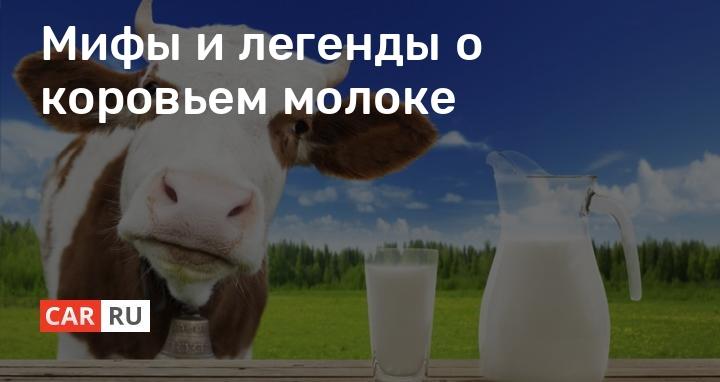 Почему молоко у коровы соленое: возможные причины и заболевания, правила лечения