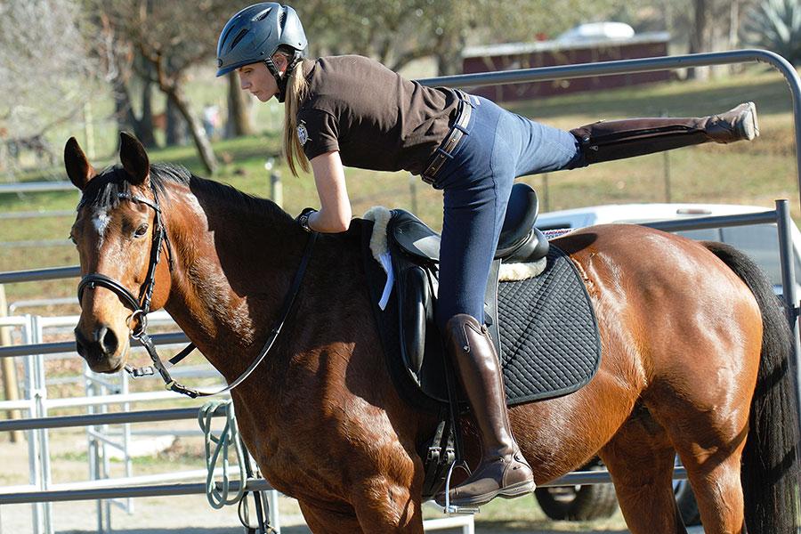 Средства и методы управления лошадью