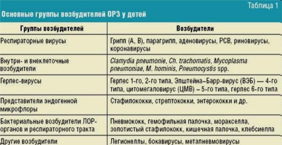 О болезнях уток: описание заболеваний, симптомы, способы лечения, препараты