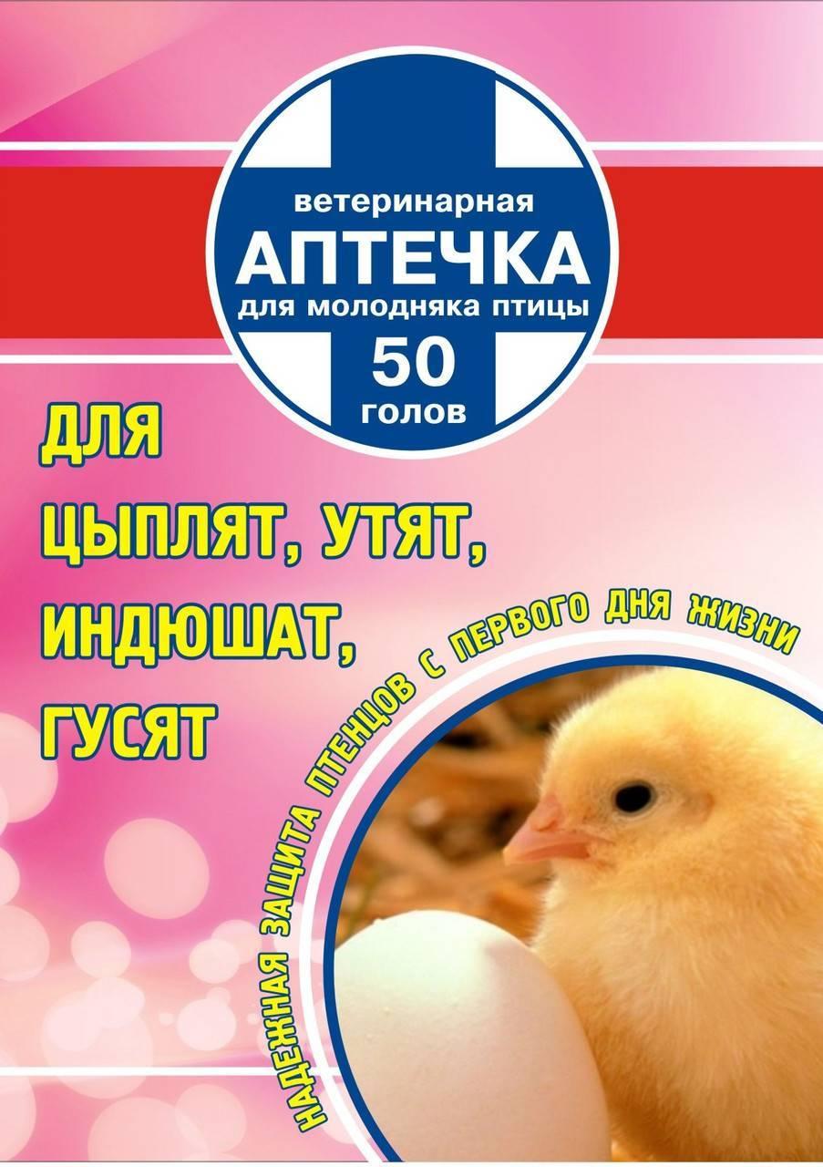 Чем пропоить цыплят в первые дни - виды препаратов, схемы и особенности пропойки