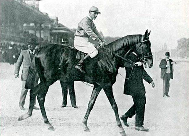 Скорость лошади: максимальная, средняя, минимальная (в км/ч)