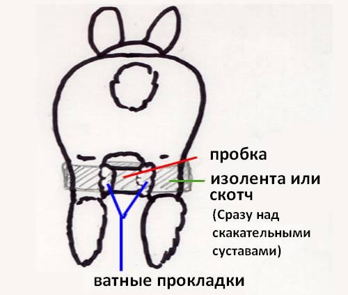 У кроликов отказывают задние лапы — что делать: почему, причины паралича
