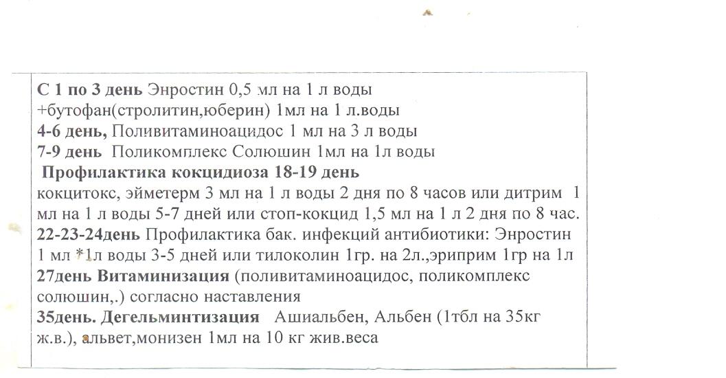 """Препарат """"байтрил"""": инструкция по применению для домашней птицы"""