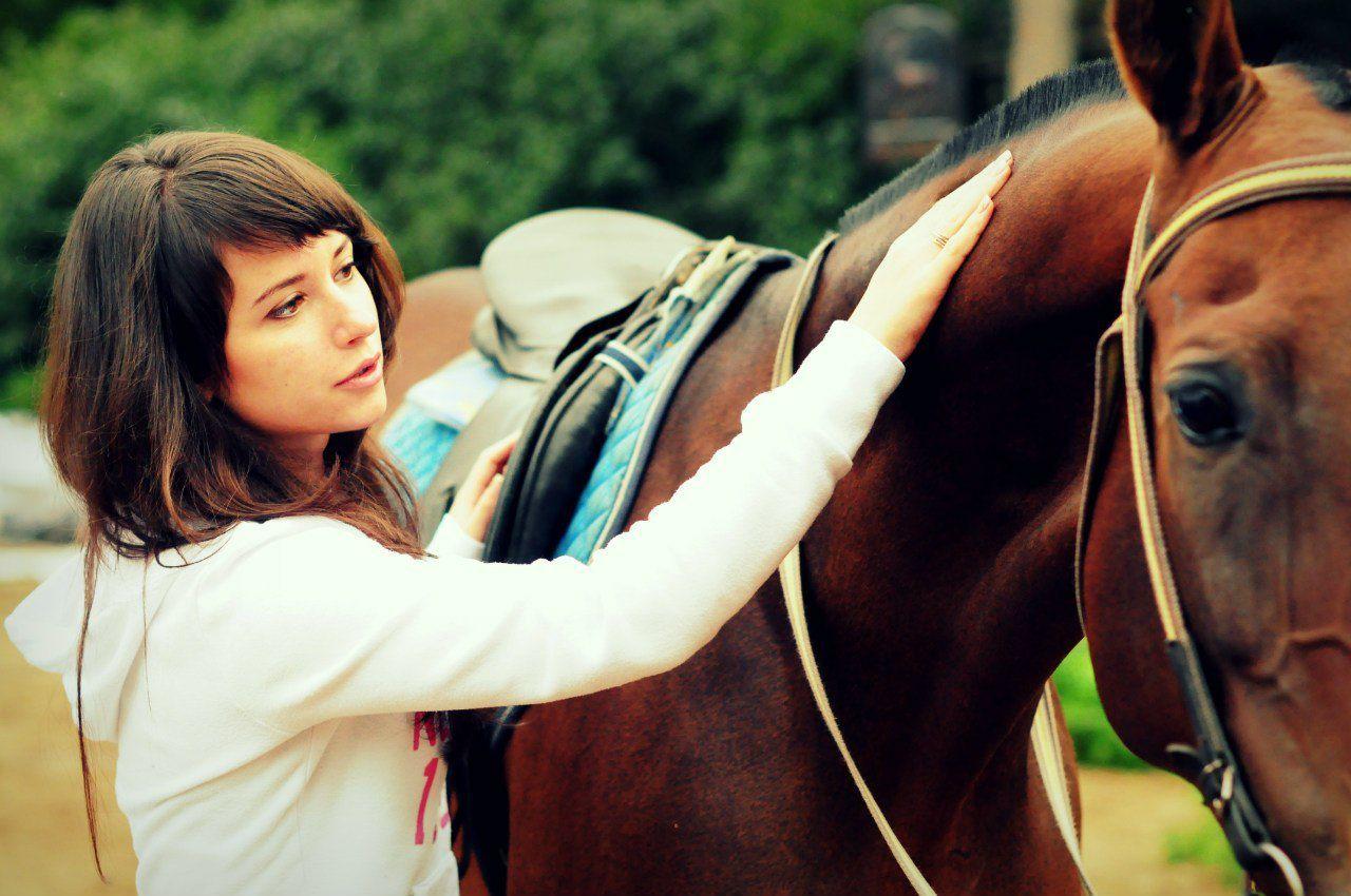 ✅ как приручают лошадей: приручение коня с учетом его природных особенностей - tehnomir32.ru