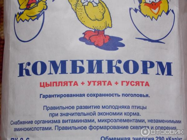 Содержимое аптечки для цыплят-бройлеров и инструкция к ней