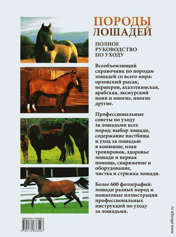 Лошадь породы першерон: история, описание, фото