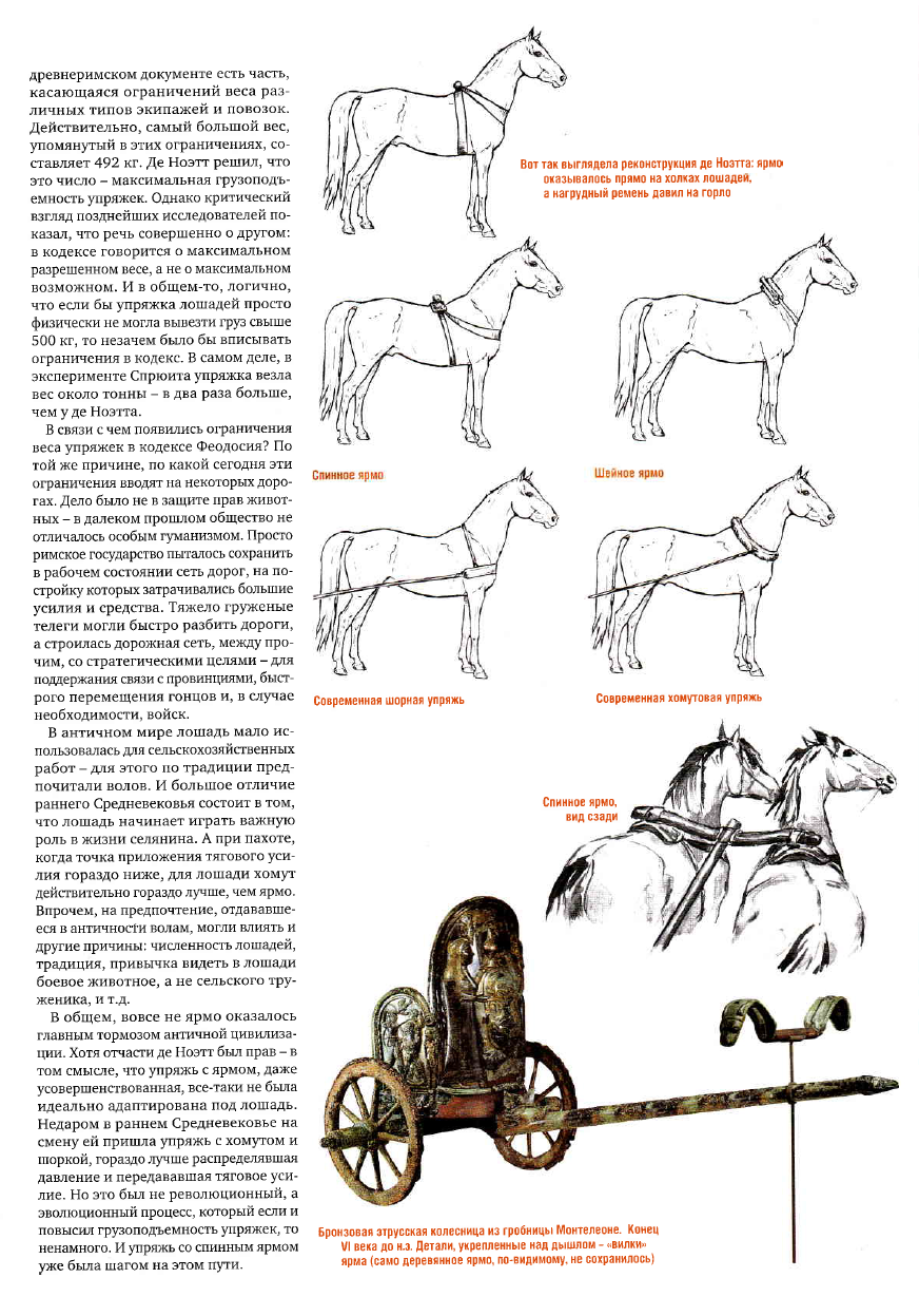 Как называется упряжка для лошадей