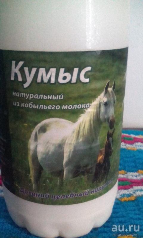 Лошадиное молоко — продуктивность, применение и доение кобыл