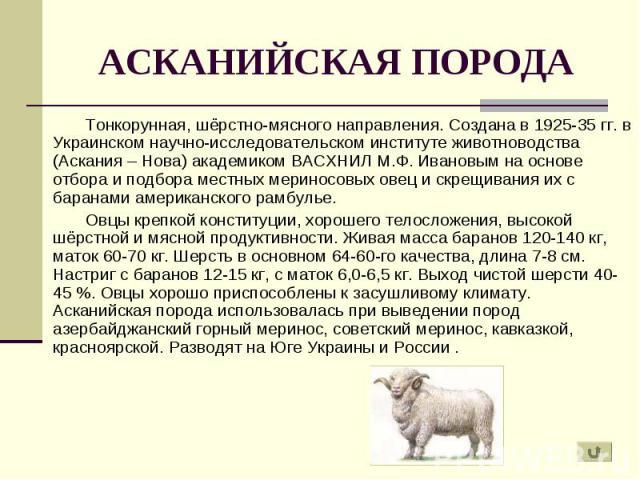 Овцеводство. госты. инструкция по бонитировке овец тонкорунных пород с основами племенной работы | fermer.ru - фермер.ру - главный фермерский портал - все о бизнесе в сельском хозяйстве. форум фермеров.