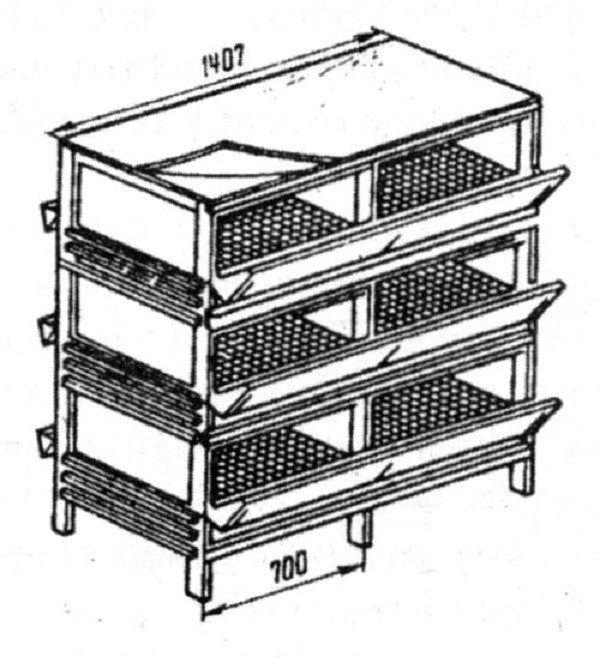 Клетки для кур несушек: чертежи с размерами и пошаговое изготовление