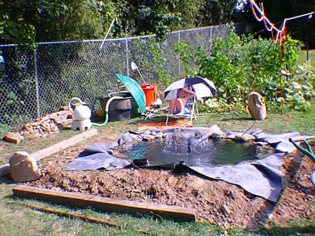 Как сделать бассейн для уток и гусей своими руками и ничего не забыть