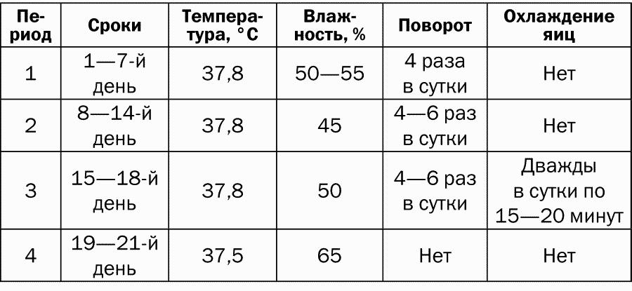 """Инкубатор """"идеальная наседка"""": инструкция по применению, схема бытового на 63, 104 яйца"""