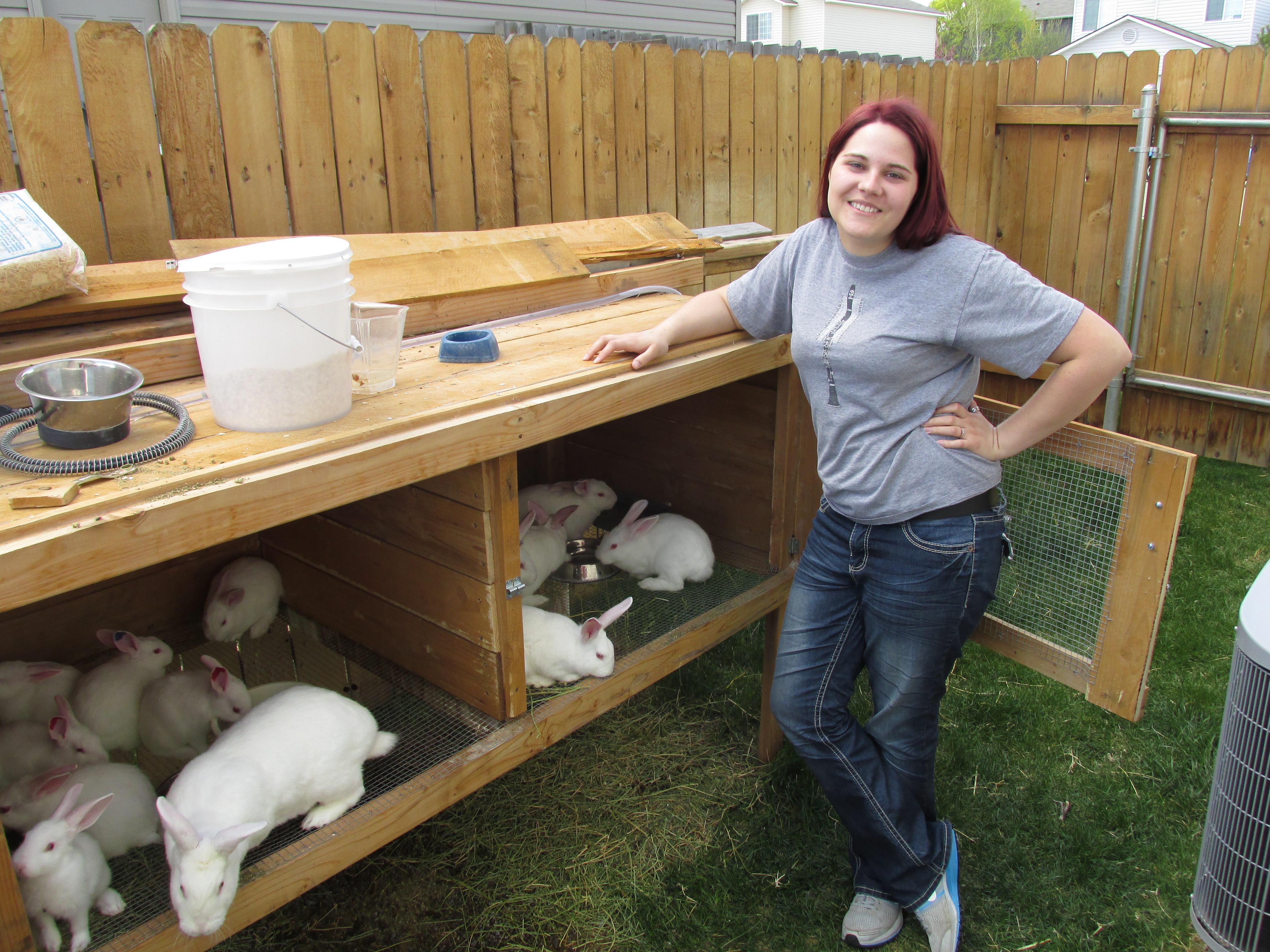 Совместное содержание кур и кроликов — про кур