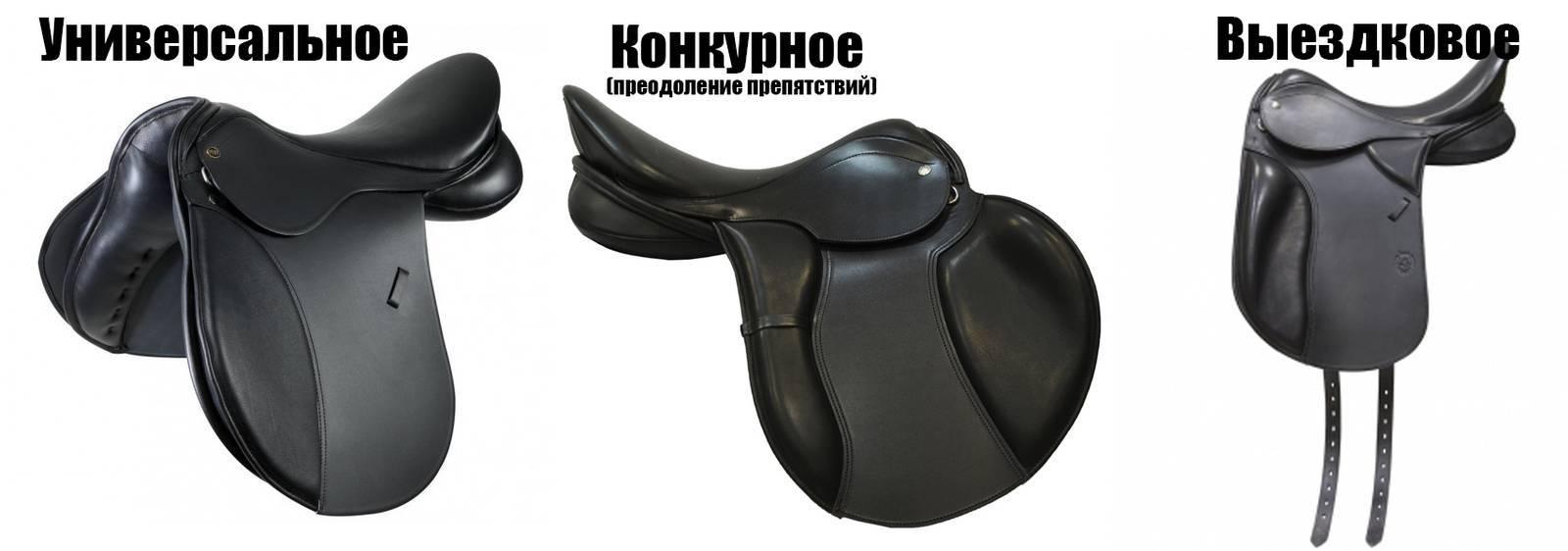Амуниция для лошадей и всадников: собираем комплект