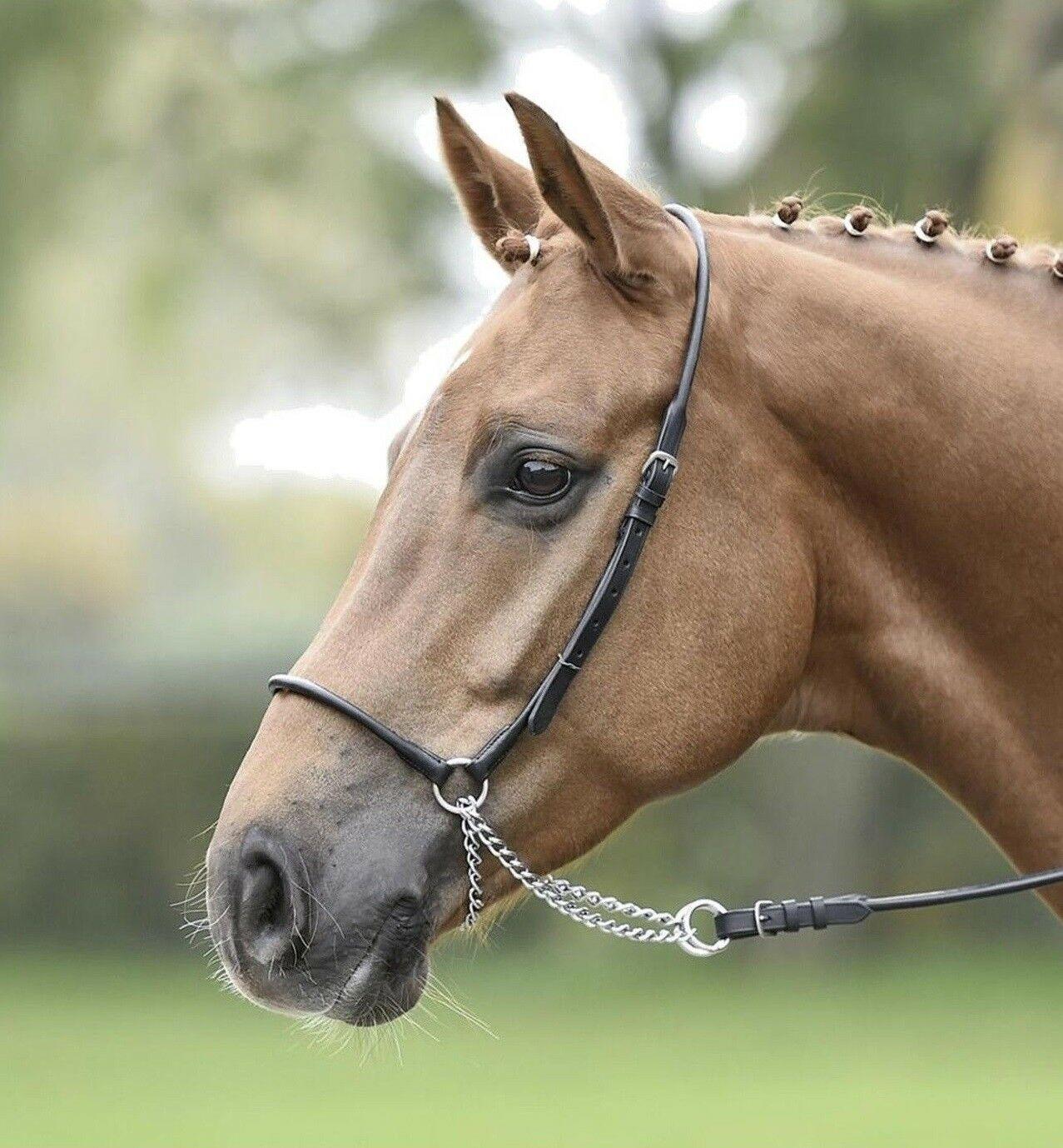 Уздечка для лошади: виды, строение, схема как сделать своими руками + фото