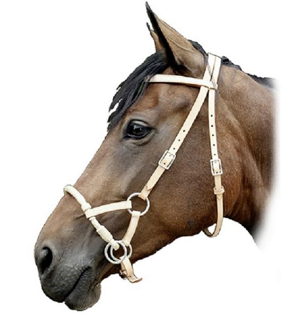 Уздечка для лошади: конструкция устройства, как сделать её своими руками