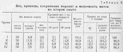 Вес свиньи: определение диапазонов для разных возрастов и пород