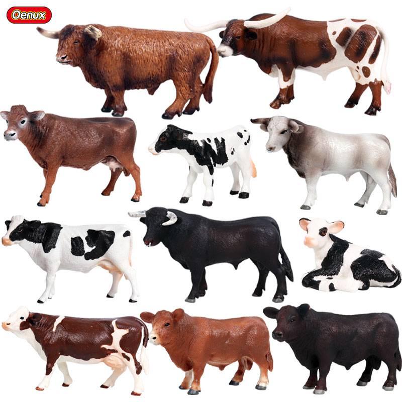 Галловейская порода коров: характеристика крс, фото и видео — особенности веса быков, содержание скота, вкус мяса телят — moloko-chr.ru