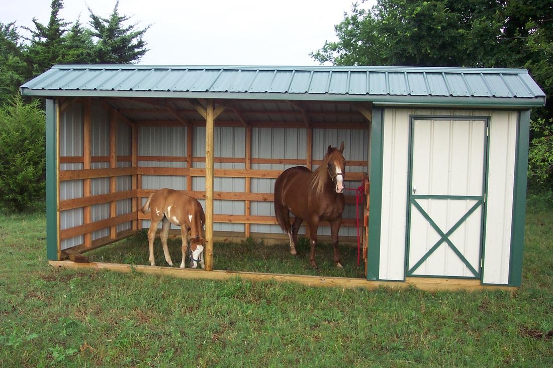 Стойло для лошади: как построить и правила оборудования, размеры и схемы