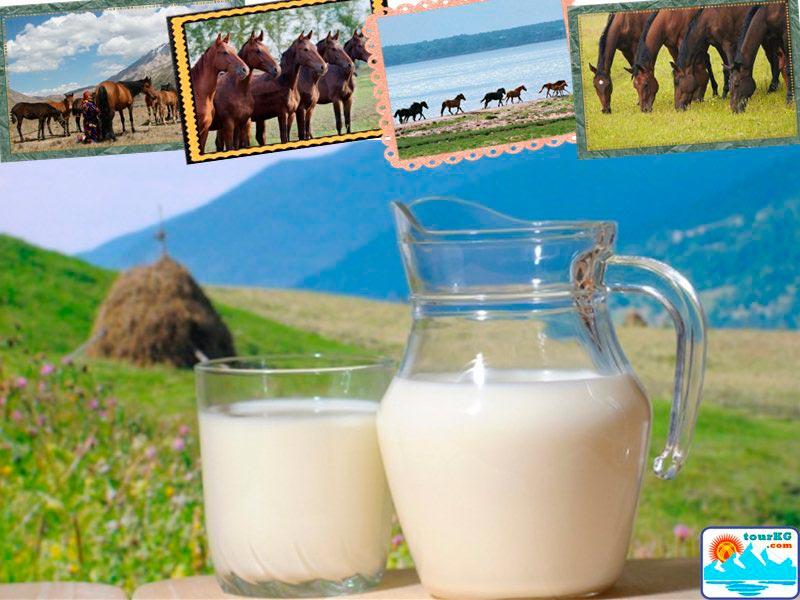 Молоко кобылье