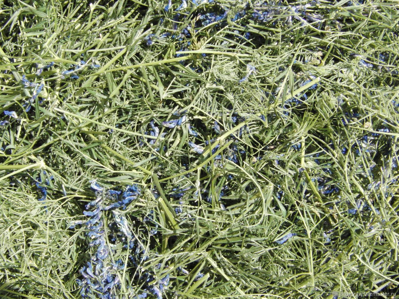 Чем можно корить коликов - можно ли давать кроликам свеклу, семечки, что едят кролики зимой