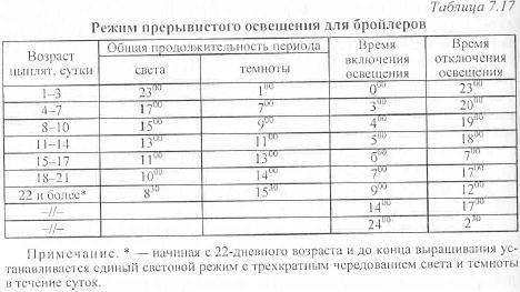 Какая температура должна быть у месячных бройлеров в домашних условиях