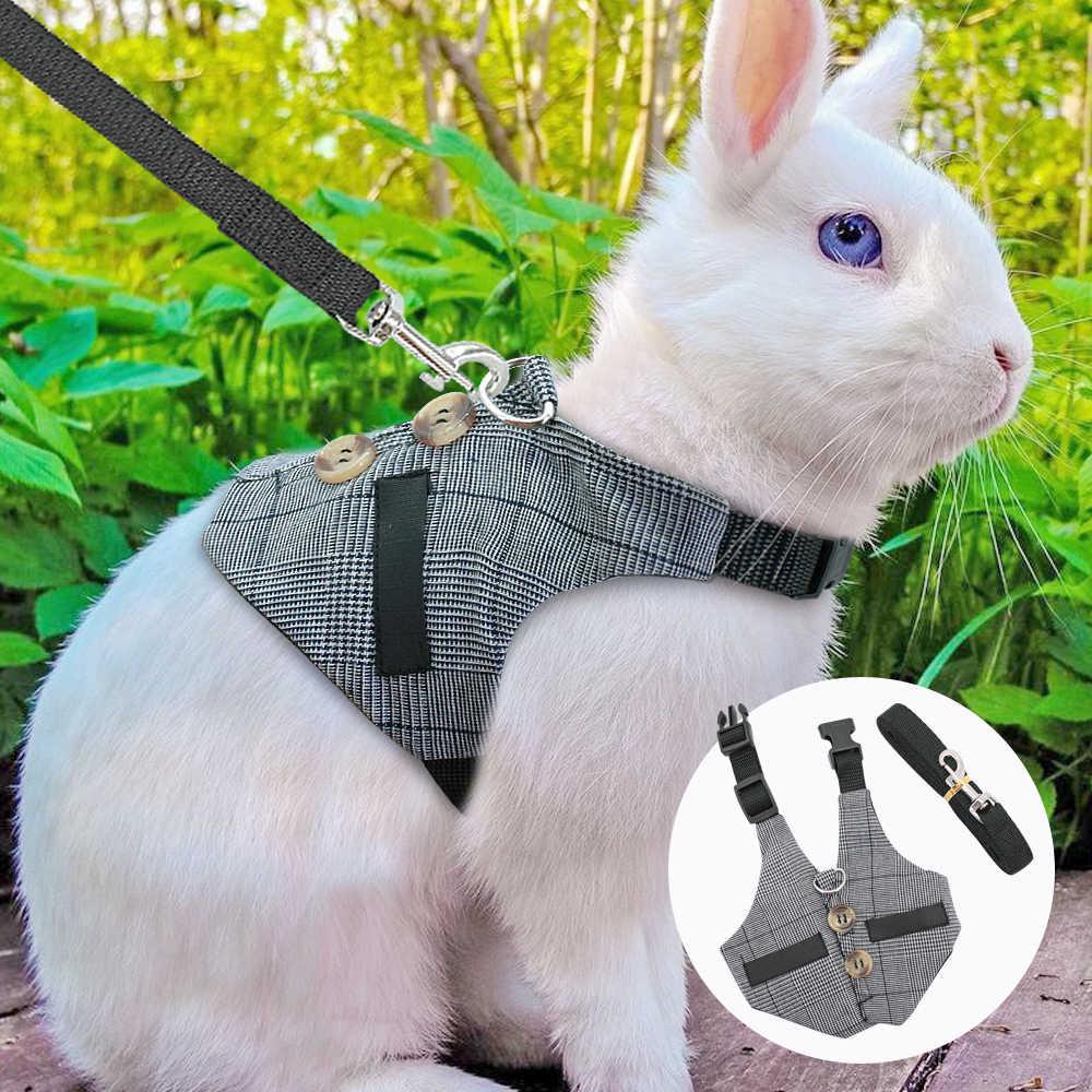 Шлейка для кроликов. делаем сами, описание с фото и видео
