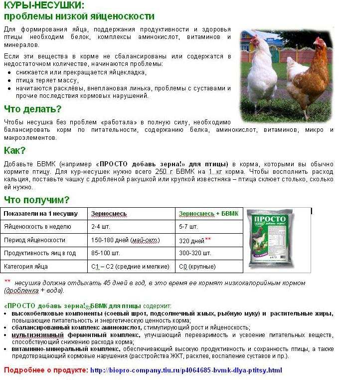 Две схемы пропаивания цыплят бройлеров глюкозой, витаминами и антибиотиками с первого дня жизни