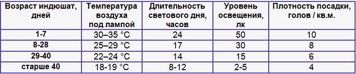 С какого возраста гусят выпускают на воду: таблица, температурный режим