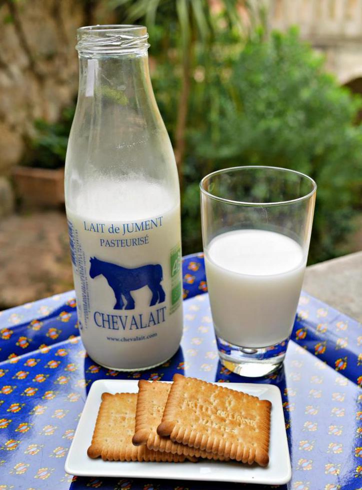 Как называется молоко лошади, полезные свойства и применение продукта