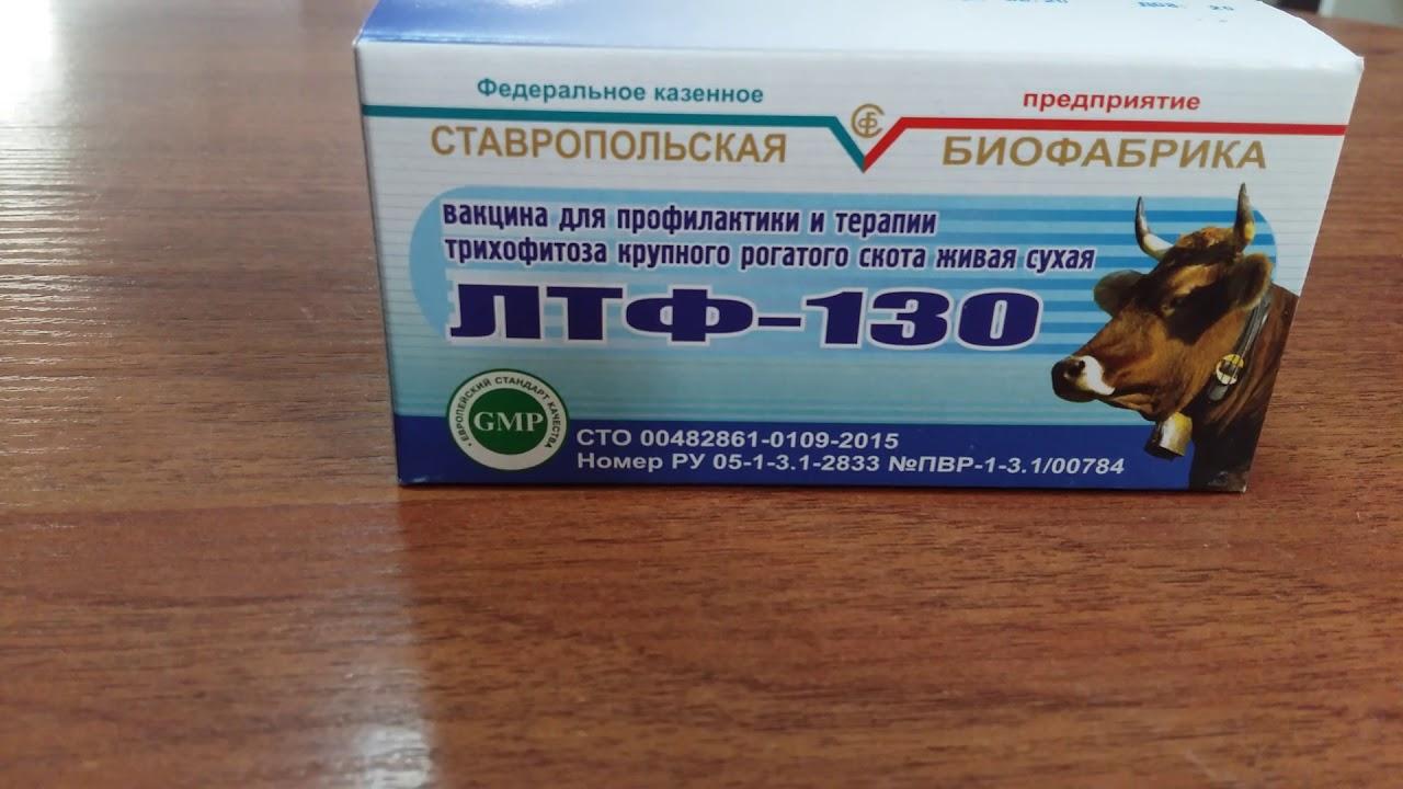 Вакцина лтф-130: инструкция по применению и дозировки