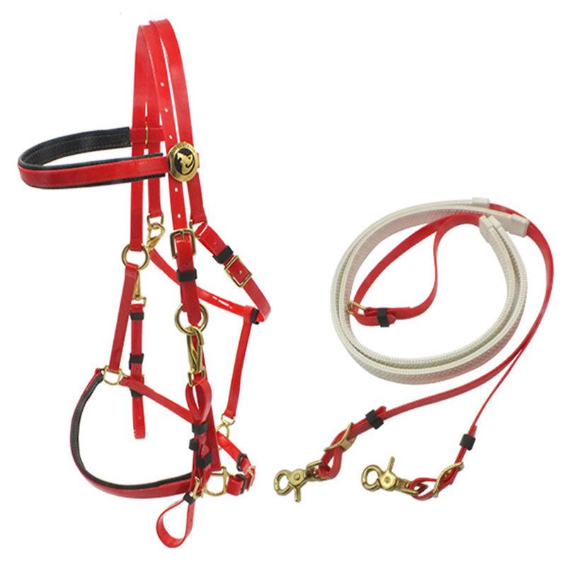 Предметы конной упряжи : уздечка для лошади, недоуздок, виды узды и как сделать уздечку своими руками