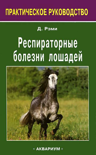 Все о болезнях лошадей: классификация, симптомы и лечение, новшества в ветеринарии