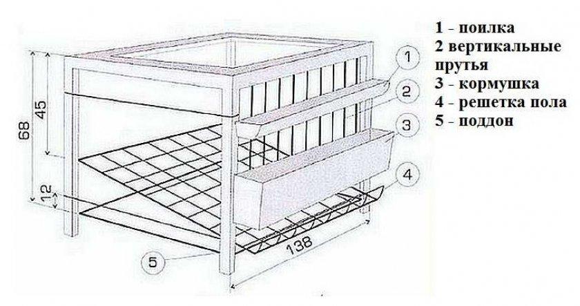 Клетки для кур несушек: чертежи с размерами и пошаговое изготовление - подробно!