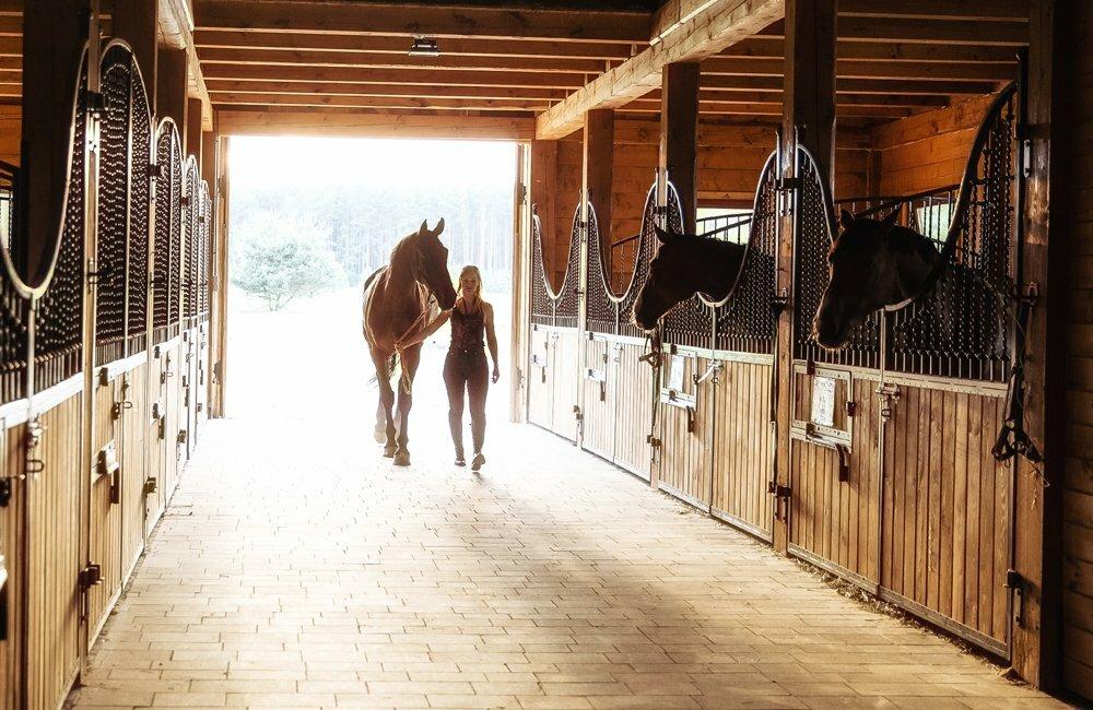 Конюшня, стойло, загон для лошади