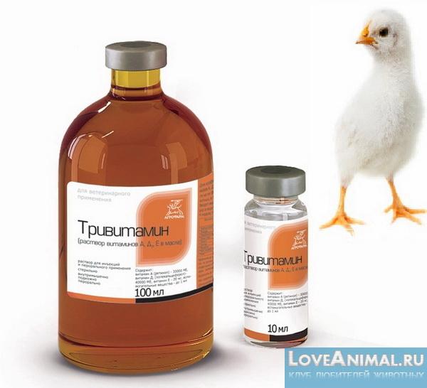 Тривитамин для поддержания здоровья цыплят