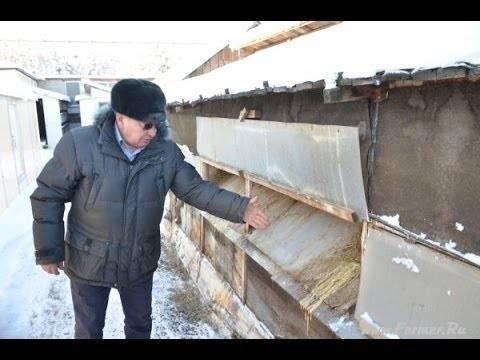 Содержание кроликов зимой на улице: плюсы и минусы, кормление и необходимые условия (утеплениие клеток, содержание в теплице)