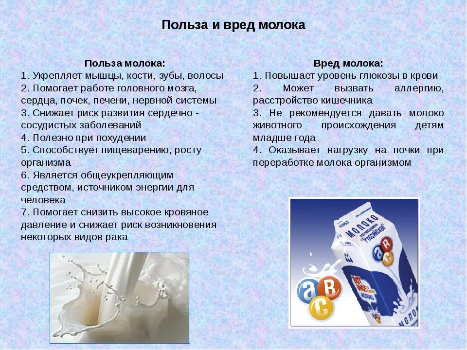 Парное молоко — польза и вред | польза и вред