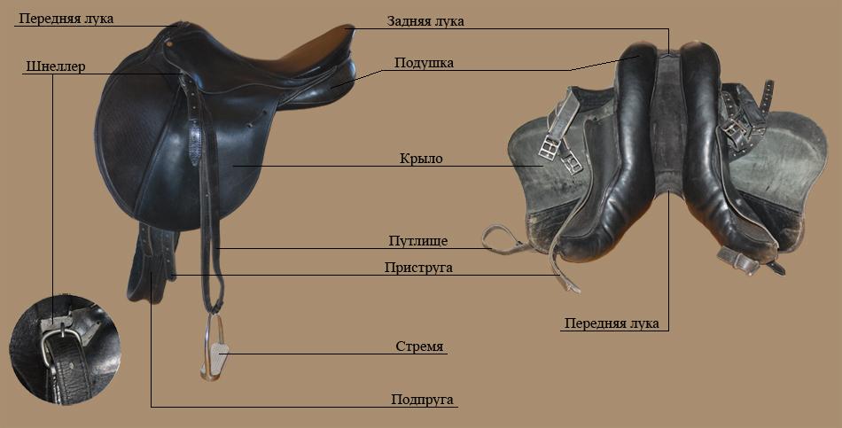 Седло для лошади: как подобрать размер, как одевать, виды (казачье, спортивное, дамское, прогулочное), как сделать своими руками