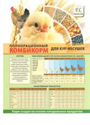 Комбикорм для кур: виды, выбор и правила кормления