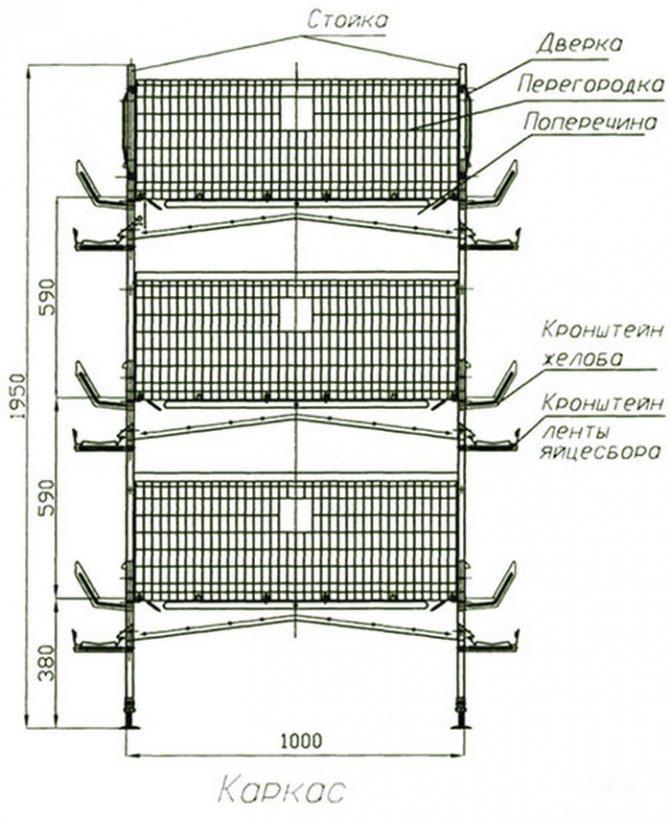 Советы по изготовлению клетки для бройлеров в домашних условиях, требования к оборудованию