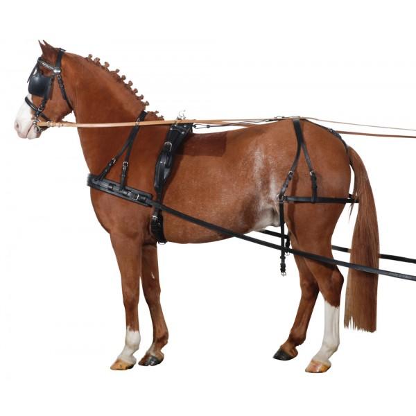 Упряжь для рабочих лошадей — основные элементы - мое село