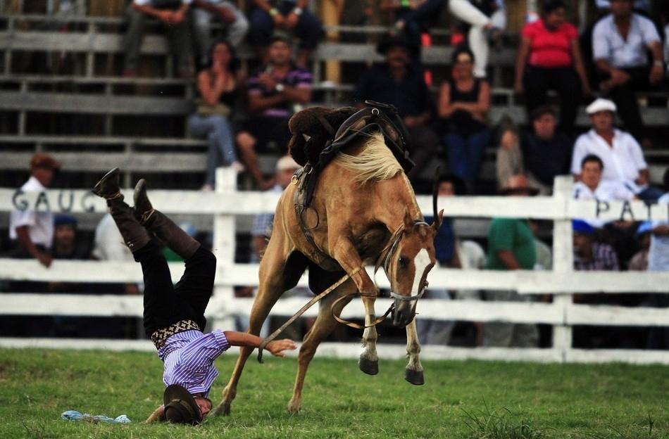 Как сесть на лошадь и как слезть с лошади в «майнкрафте»: особенности приручения